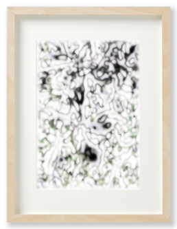 Ron Schoningh fine art print Organic Memories 7
